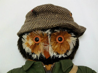 2019-05-12-owl (4).jpg
